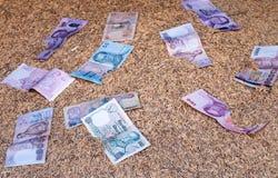 Наличные деньги на неочищенных рисах Стоковые Фотографии RF