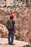 На краю каньона - национального парка Сиона Стоковые Фото