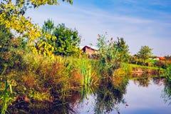 На краю озера Стоковое фото RF