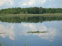 Над озером стоковые изображения rf