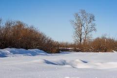 На окраинах деревни Стоковое Фото