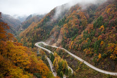 На дороге горы Стоковое Изображение RF