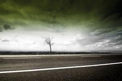 На дороге Стоковая Фотография RF