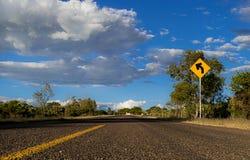 На дороге стоковое изображение