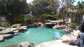 На открытом воздухе бассейн Cali стоковое фото rf