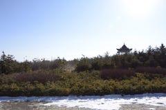 На парке Стоковое Изображение