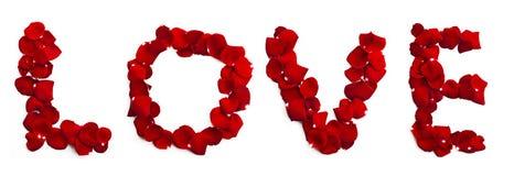 Надпись влюбленности изолированная на белой предпосылке Стоковая Фотография