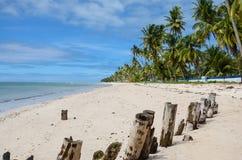 На пляже Стоковое Изображение RF