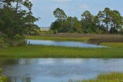 На побережье звука St. George около Carrabelle, Флорида стоковые изображения rf
