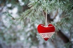 На покрытой снег ветви рождественских елок, украшения рождества висят в форме прозрачных шариков, сердец войлока Стоковое Фото