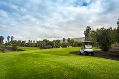 На поле для гольфа, Тенерифе стоковое изображение rf