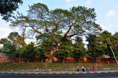 На пути от рынка Boyoke к пагоде Shwedagon Стоковое Фото