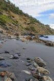 На пляже Стоковые Фото