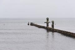На пляже Ahrenshoop Стоковые Изображения