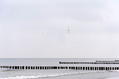 На пляже Ahrenshoop Стоковое фото RF