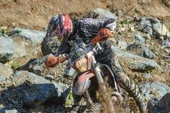 На ралли Enduro края 2016 трудном Стоковые Фото