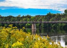 На реке Chippewa Стоковая Фотография