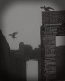Над руинами Стоковое фото RF