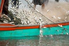 На рыбацкой лодке, улавливая много рыб стоковые фото