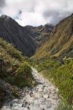 На следе Inca к Machu Picchu Внушительная тропа с h стоковое фото