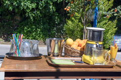 На солнечный день таблица с vozhmylkoy апельсинами и лимонами Стоковое Изображение RF