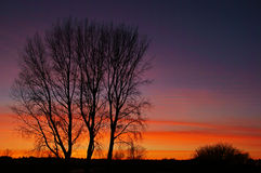 над солнцем яркой шерсти красным заход солнца покрывает зима валов Стоковые Фото