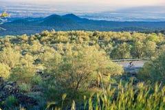 На стороне горы Этна Стоковые Изображения