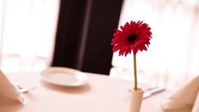 На таблице ресторан с белой тканью один цветок в вазе видеоматериал
