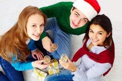 Toasting друзья Стоковое Изображение