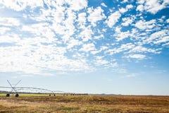 На ферме Стоковое Изображение RF