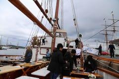 На-хмель хмеля с прогулки на яхте Стоковые Фото