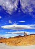 На холме представляет гуанако Стоковое Изображение RF