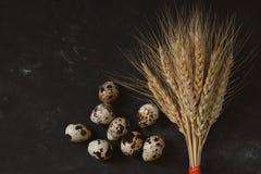 На черной предпосылке, желтой пшенице и зрелых яичках триперсток Стоковая Фотография
