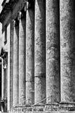 На шагах здания суда Стоковое Изображение