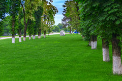 На silk траве к утесу Стоковое Изображение