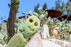 На smiley солнечного дня усмехаясь кактуса Стоковая Фотография