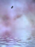 небеса лаванды Стоковое Фото