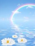 небесная перспектива Стоковое Изображение RF