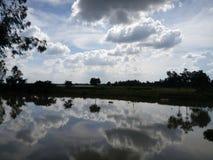 Небесно-голубой и небо Стоковое Изображение RF