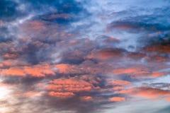 Небесно-голубой пинк стоковое изображение rf