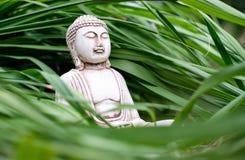 Небольшая белая статуя Будды в представлении раздумья на длинную предпосылку зеленой травы Религиозный символ буддизма стоковое изображение