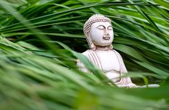 Небольшая белая статуя Будды в представлении раздумья на длинную предпосылку зеленой травы Религиозный символ буддизма стоковые изображения rf