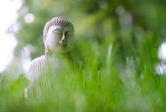 Небольшая белая статуя Будды в представлении раздумья с передним планом зеленой травы и на естественную яркую запачканную предпос стоковое фото rf