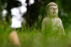 Небольшая белая статуя Будды в представлении раздумья с передним планом зеленой травы и на естественную яркую запачканную предпос стоковое фото