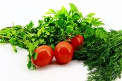 3 небольших красных томата помещенного с зелеными цветами на белой предпосылке стоковые фото