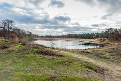 Небольшое озеро в голландском заповеднике стоковые фотографии rf