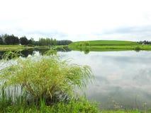 Небольшое озеро в парке, Литве Стоковое фото RF
