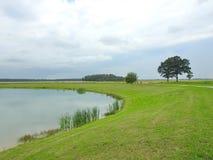 Небольшое озеро и деревья в парке, Литве стоковое изображение