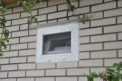Небольшое окно металл-пластмассы с кирпичом сетки от комаров белым в стене рядом с ветвями Яблока стоковое фото rf