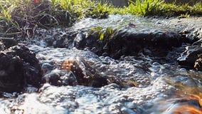 Небольшое река в супер конце-вверх замедленного движения с коротким фокусом сток-видео